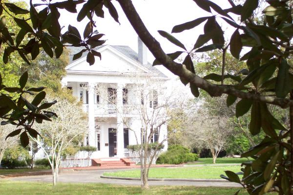 Profile Image from Arlington Plantation House & Gardens